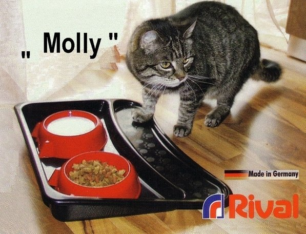 schussel-set-mit-tablett-rival-molly-906-000